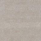 SAIL black carpet