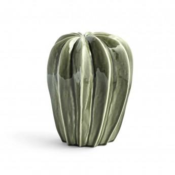 CACTI 1 cactus