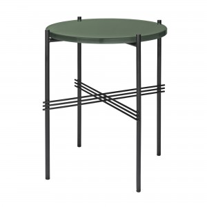 TS blue green table S