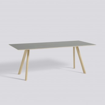 COPENHAGEN Table model 30 - 200x90 cm