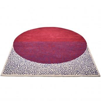 SPOT carpet