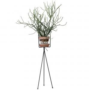 Plant Stand M noir