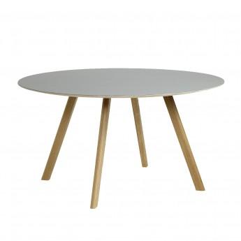 COPENHAGEN round table 25