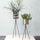 Support pour plantes
